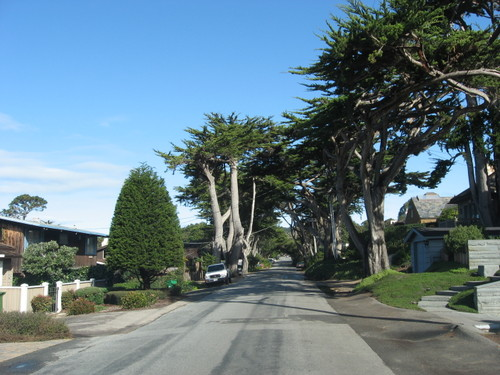 Residential street in Carmel, California