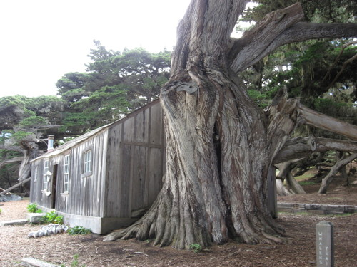 Small ranger station at Point Lobos, Whalers Cove