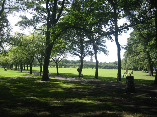 Park near the University of Edinburgh