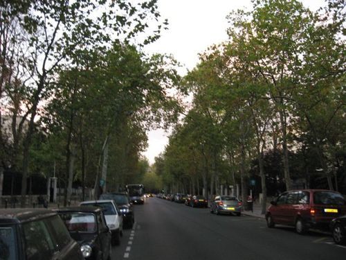 Leafy streets of Neuilly