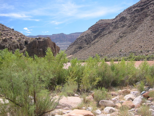 A campsite on the Colorado River, in the Grand Canyon