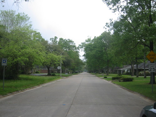 Southern Louisiana, a typical street