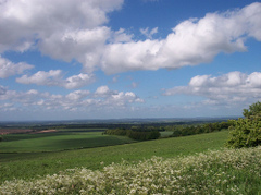 The_ridgeway_nr_wantage_by_rickspho